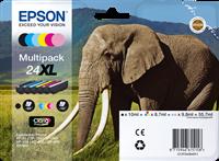 Epson C13T24384011