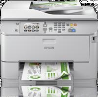 Multifunktionsgerät Epson C11CD08301