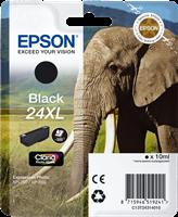 Epson T2431+