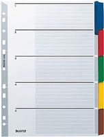 Kartonregister Blanko 160 g Leitz 4320-00