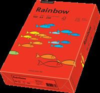 Papyrus Rainbow Papier 160g/m²