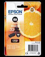 Druckerpatrone Epson T3361