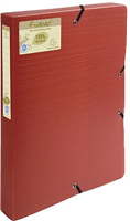 Archivbox PP Exacompta 553575E