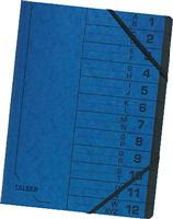 Colorspan-Ordnungsmappe FALKEN 11288099